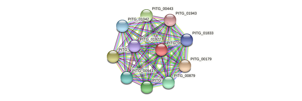 PITG_09431 protein (Phytophthora infestans) - STRING interaction network