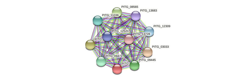 PITG_09438 protein (Phytophthora infestans) - STRING interaction network
