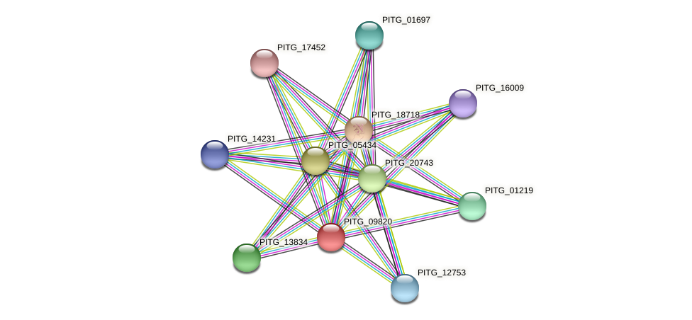 PITG_09820 protein (Phytophthora infestans) - STRING interaction network