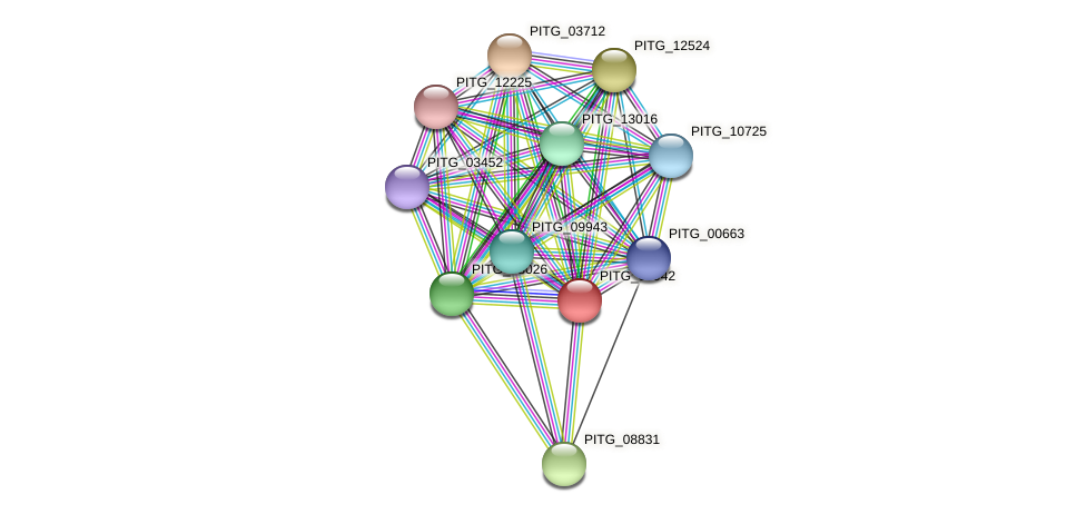 PITG_09942 protein (Phytophthora infestans) - STRING interaction network