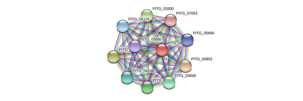 PITG_09956 protein (Phytophthora infestans) - STRING interaction network