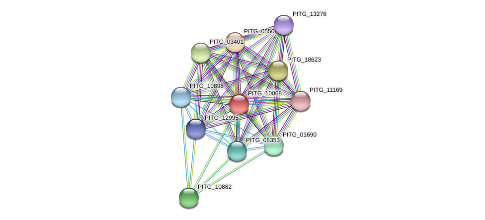 PITG_10068 protein (Phytophthora infestans) - STRING interaction network