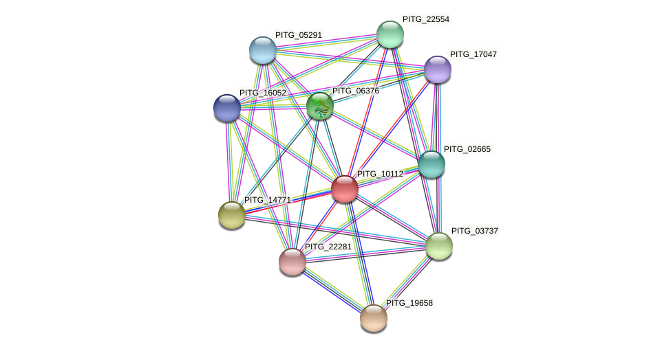 PITG_10112 protein (Phytophthora infestans) - STRING interaction network