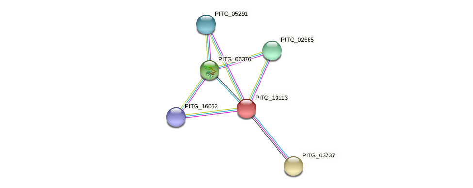 PITG_10113 protein (Phytophthora infestans) - STRING interaction network