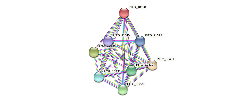 PITG_10128 protein (Phytophthora infestans) - STRING interaction network