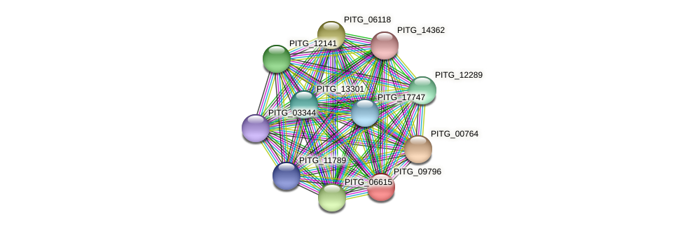 PITG_10219 protein (Phytophthora infestans) - STRING interaction network