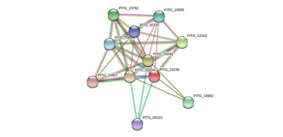 PITG_10249 protein (Phytophthora infestans) - STRING interaction network