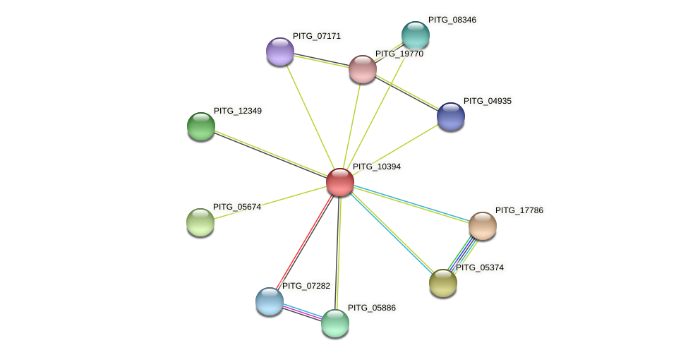 PITG_10394 protein (Phytophthora infestans) - STRING interaction network