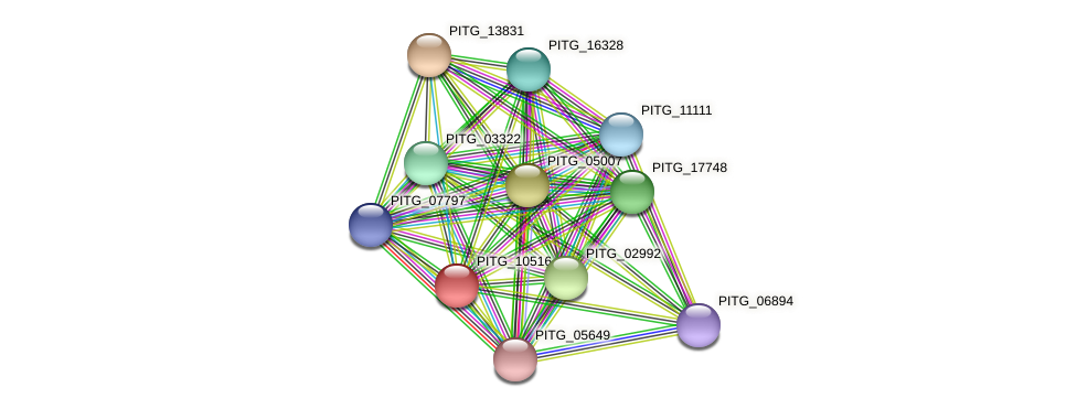 PITG_10516 protein (Phytophthora infestans) - STRING interaction network