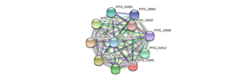 PITG_10602 protein (Phytophthora infestans) - STRING interaction network
