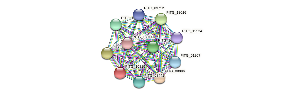 PITG_10819 protein (Phytophthora infestans) - STRING interaction network
