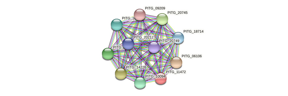 PITG_11472 protein (Phytophthora infestans) - STRING interaction network