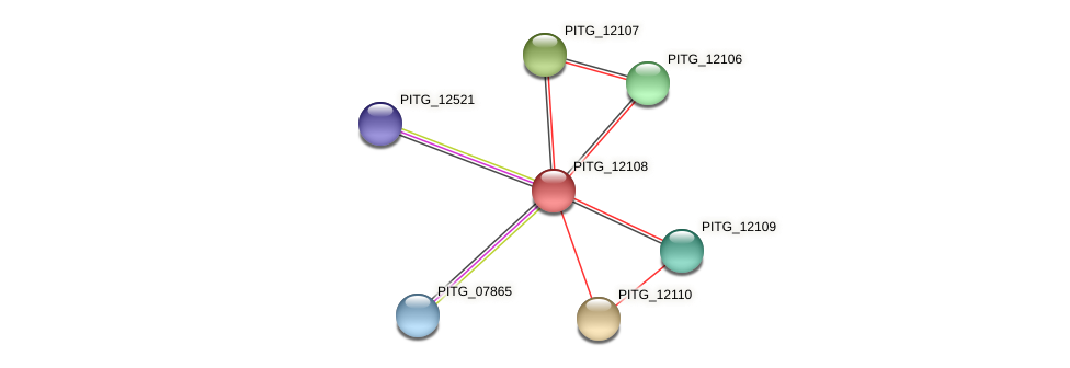 PITG_12108 protein (Phytophthora infestans) - STRING interaction network