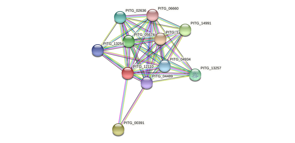 PITG_12110 protein (Phytophthora infestans) - STRING interaction network