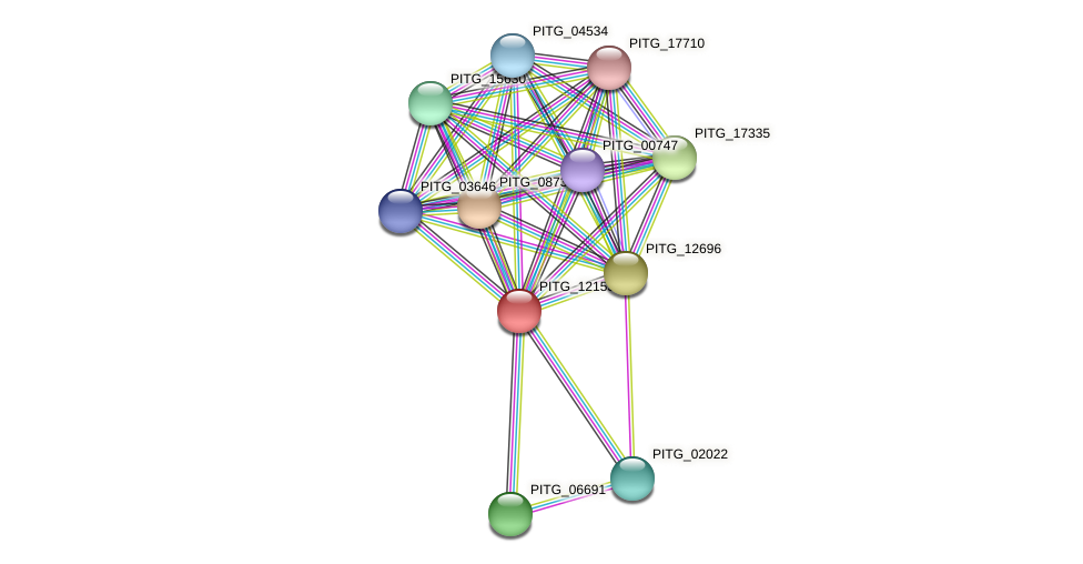 PITG_12153 protein (Phytophthora infestans) - STRING interaction network
