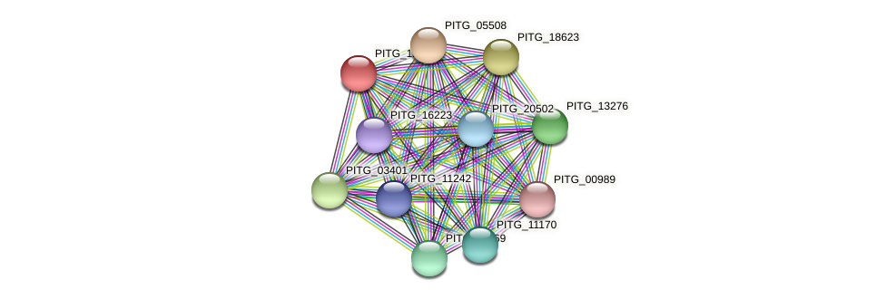 PITG_12169 protein (Phytophthora infestans) - STRING interaction network