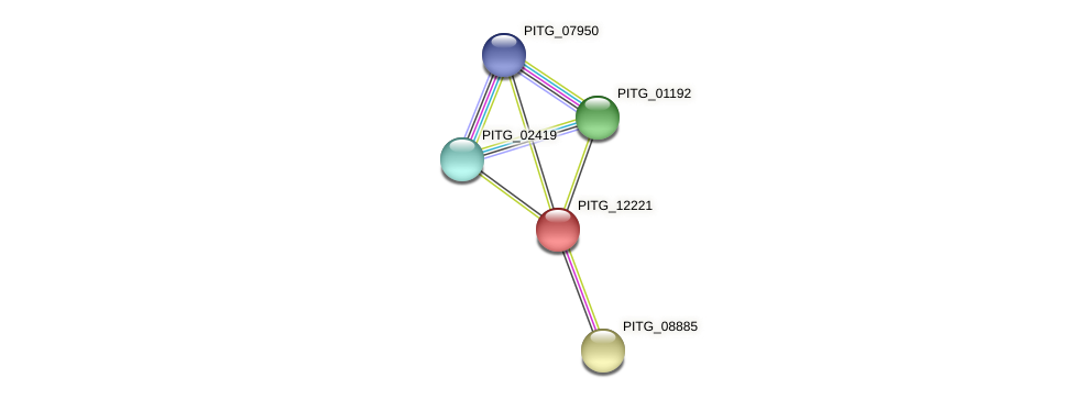 PITG_12221 protein (Phytophthora infestans) - STRING interaction network
