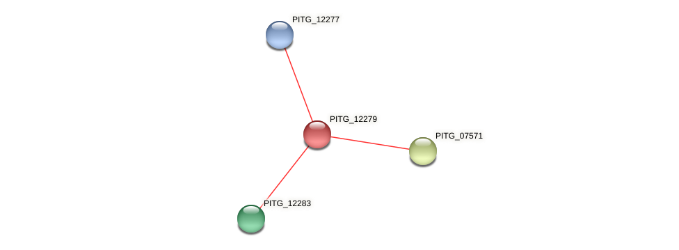 PITG_12279 protein (Phytophthora infestans) - STRING interaction network