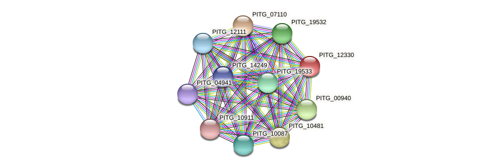PITG_12330 protein (Phytophthora infestans) - STRING interaction network