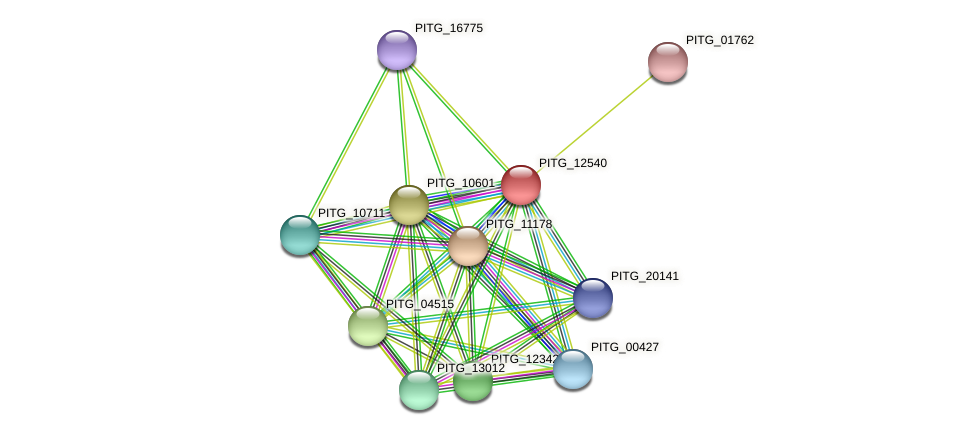 PITG_12540 protein (Phytophthora infestans) - STRING interaction network