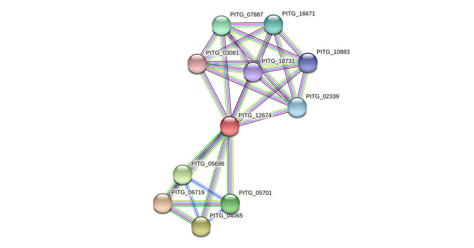 PITG_12674 protein (Phytophthora infestans) - STRING interaction network