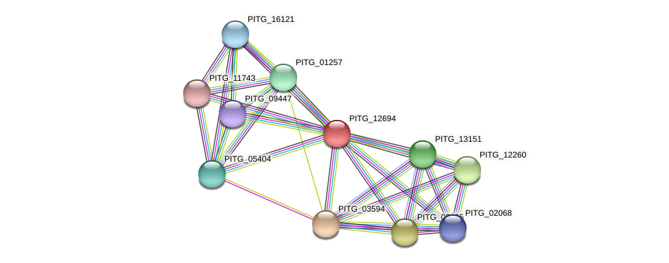 PITG_12694 protein (Phytophthora infestans) - STRING interaction network
