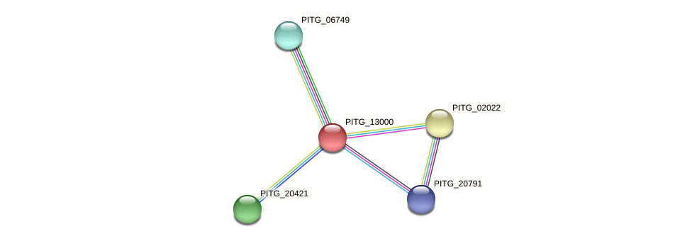 PITG_13000 protein (Phytophthora infestans) - STRING interaction network