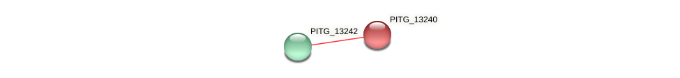 PITG_13240 protein (Phytophthora infestans) - STRING interaction network
