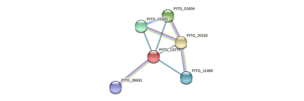 PITG_13270 protein (Phytophthora infestans) - STRING interaction network