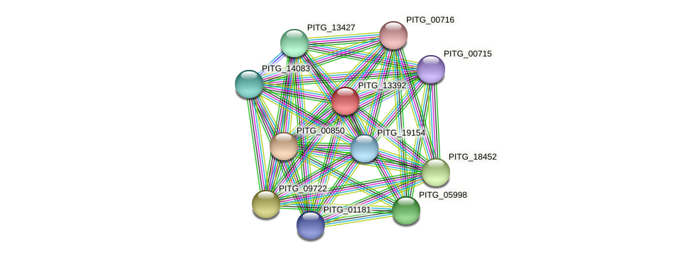 PITG_13392 protein (Phytophthora infestans) - STRING interaction network
