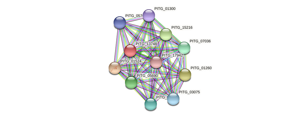 PITG_13748 protein (Phytophthora infestans) - STRING interaction network