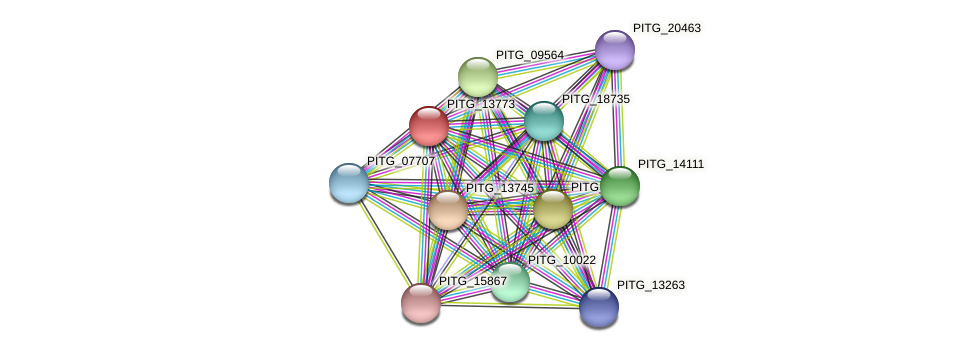 PITG_13773 protein (Phytophthora infestans) - STRING interaction network