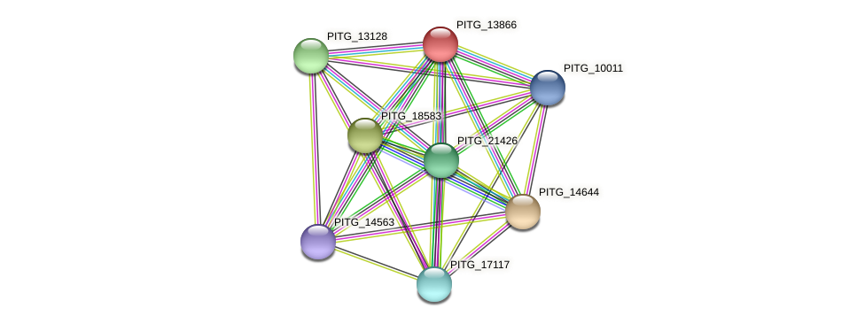 PITG_13866 protein (Phytophthora infestans) - STRING interaction network