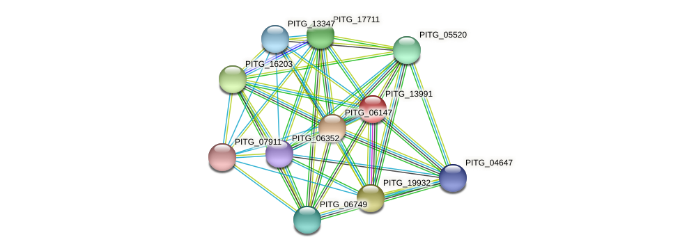 PITG_13991 protein (Phytophthora infestans) - STRING interaction network