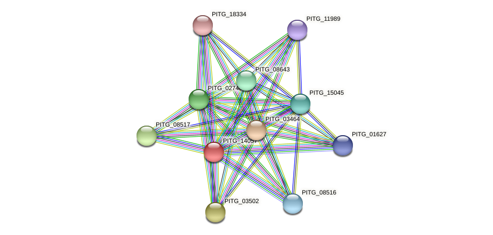 PITG_14057 protein (Phytophthora infestans) - STRING interaction network