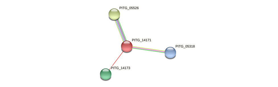 PITG_14171 protein (Phytophthora infestans) - STRING interaction network