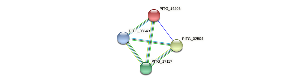PITG_14206 protein (Phytophthora infestans) - STRING interaction network