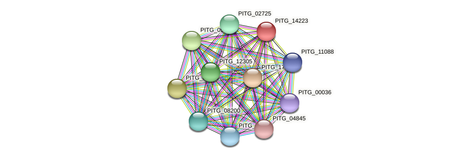 PITG_14223 protein (Phytophthora infestans) - STRING interaction network