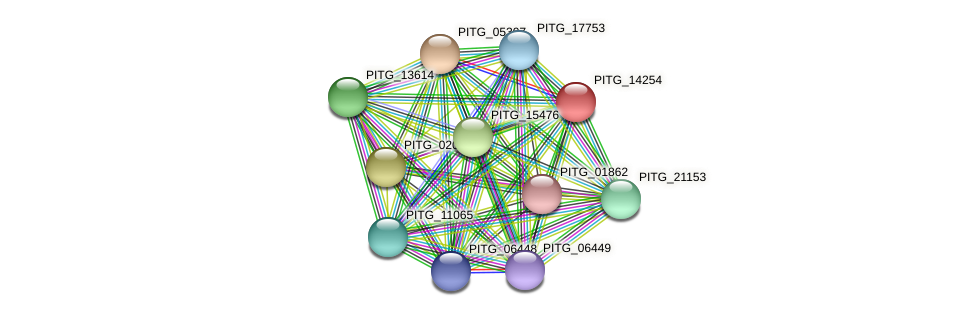 PITG_14254 protein (Phytophthora infestans) - STRING interaction network