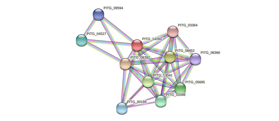PITG_14260 protein (Phytophthora infestans) - STRING interaction network