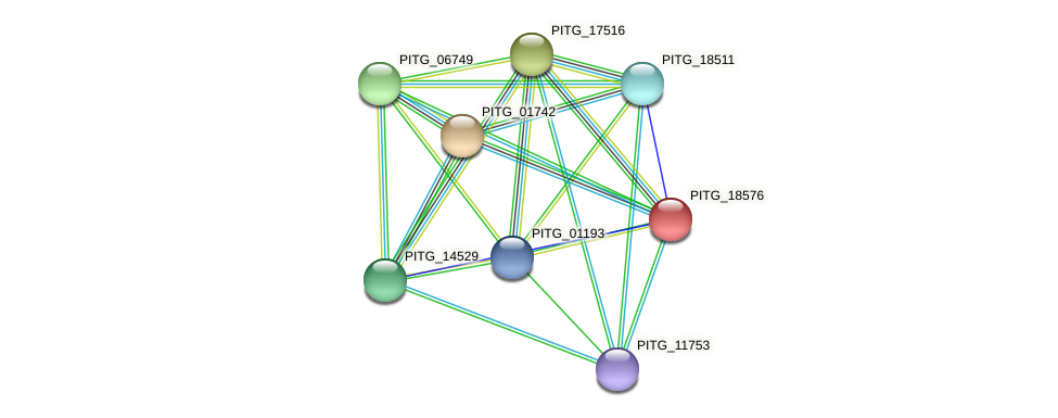 PITG_14298 protein (Phytophthora infestans) - STRING interaction network
