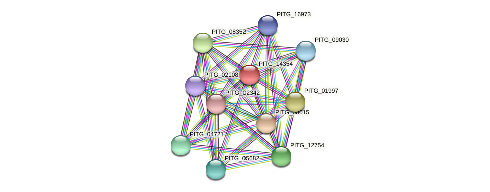 PITG_14354 protein (Phytophthora infestans) - STRING interaction network