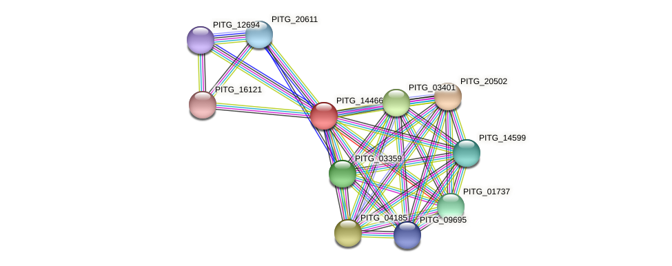 PITG_14466 protein (Phytophthora infestans) - STRING interaction network