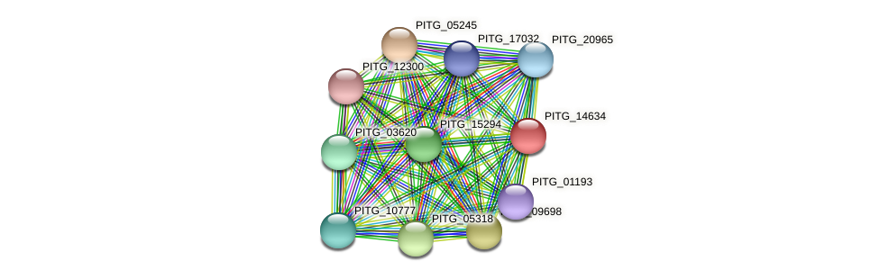 PITG_14634 protein (Phytophthora infestans) - STRING interaction network