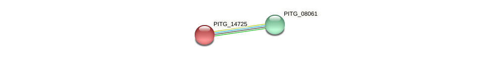 PITG_14725 protein (Phytophthora infestans) - STRING interaction network