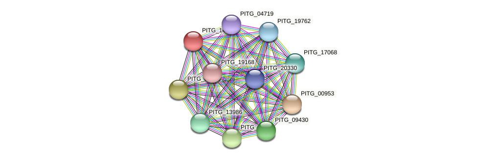 PITG_14806 protein (Phytophthora infestans) - STRING interaction network