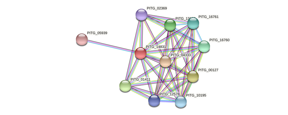 PITG_14831 protein (Phytophthora infestans) - STRING interaction network