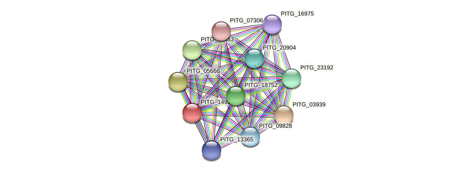 PITG_14914 protein (Phytophthora infestans) - STRING interaction network