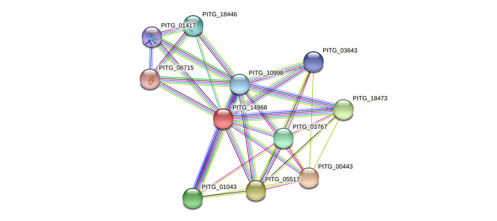 PITG_14968 protein (Phytophthora infestans) - STRING interaction network