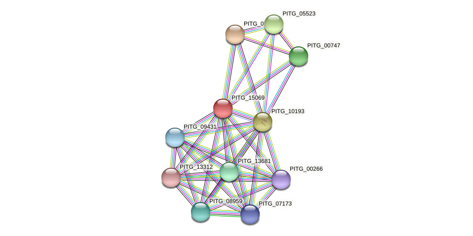 PITG_15069 protein (Phytophthora infestans) - STRING interaction network